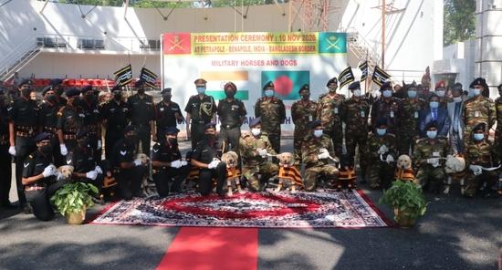 भारतीय सेना ने पूरी तरह से प्रशिक्षित 20 सैन्य घोड़ों और 10 बारूदी सुरंग का पता लगाने वाले कुत्तों को बांग्लादेश सेना को सौंपा: रक्षा मंत्रालय