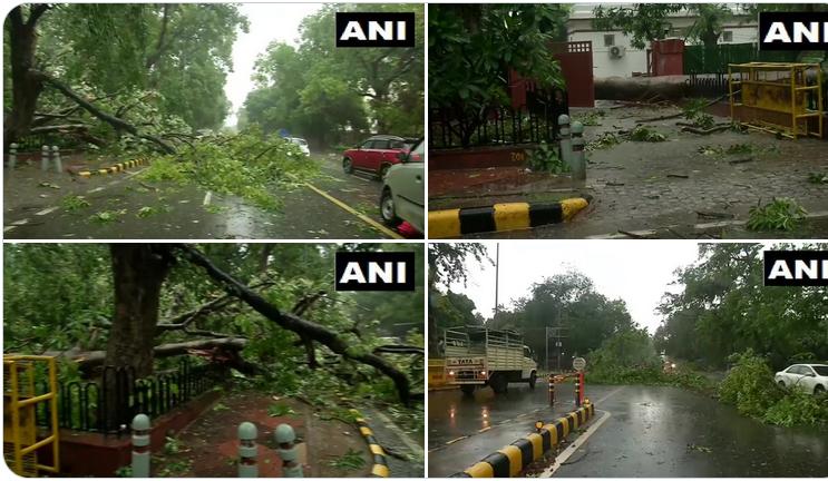 देश की राजधानी नयी दिल्ली में आज शाम अचानक हुई तूफानी बारिश के बाद कई जगह पेड़ गिरे
